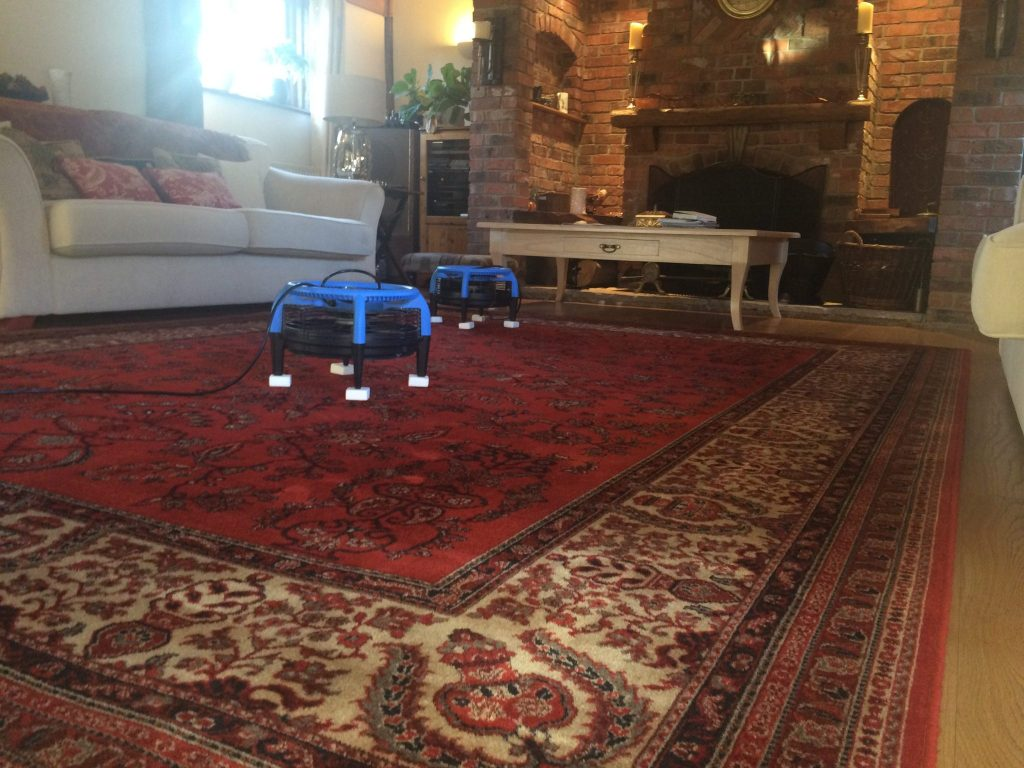 rug cleaning in essex and london