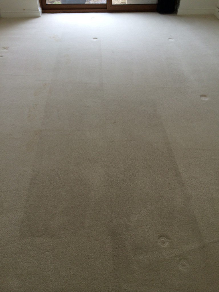 Carpet Cleaning in Basildon
