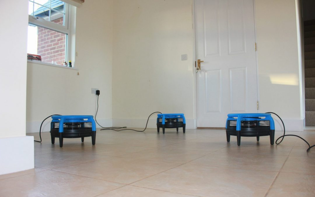 Amtico & Karndean Floor Cleaning